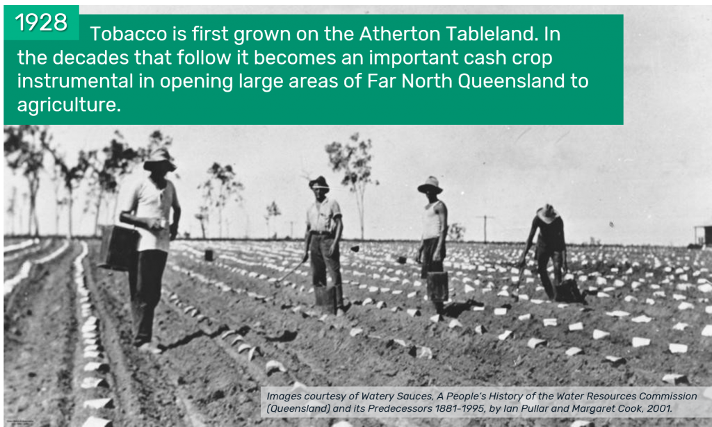 1928 - Tobacco is first grown on the Atherton Tableland. In the decades that follow it becomes an important cash crop instrumental in opening large areas of Far North Queensland to agriculture.
